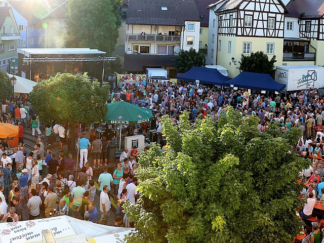 Panorama_Sommerabend-5910-12a.jpg