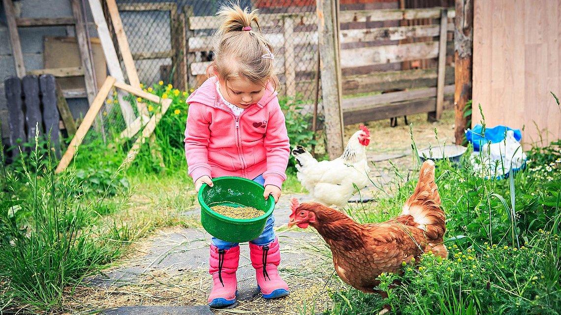 Bauernhofurlaub Am Bodensee Kinderbauernhof Am See Bodenseeferien De